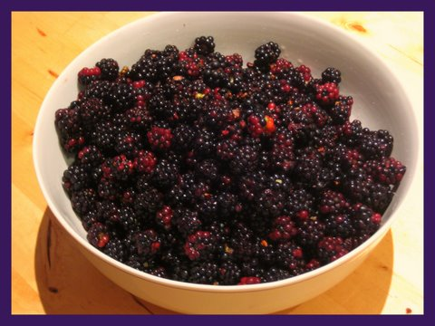 cooking with blackberries