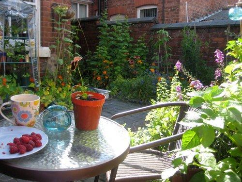 Small family gardens for Very small garden ideas