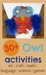 Owl crafts and activities