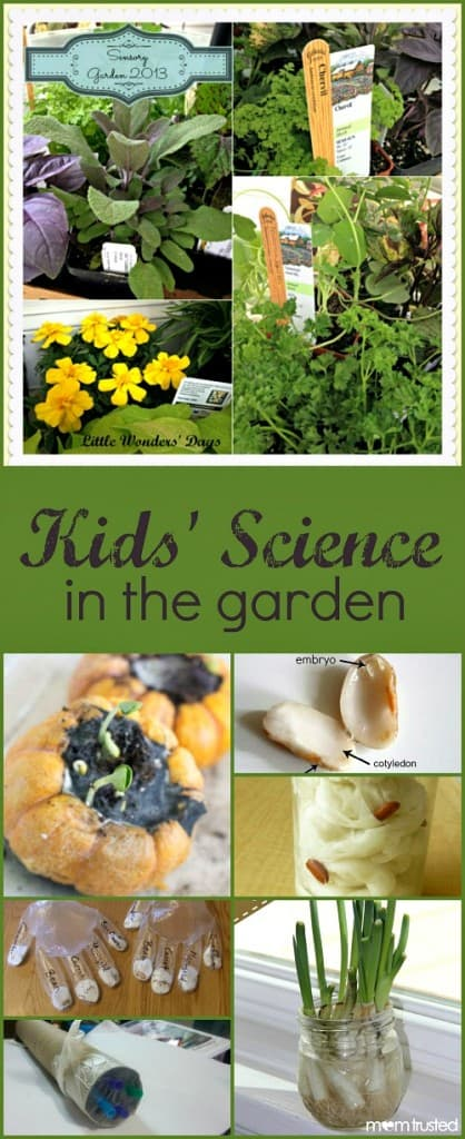 Kids-Science-in-the-Garden-Features