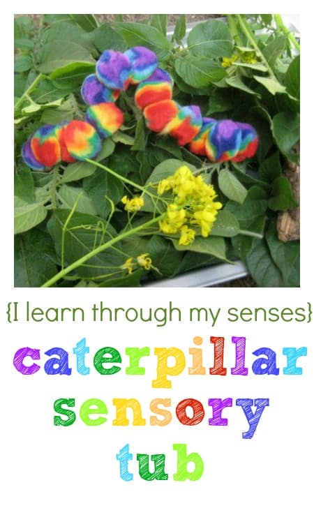caterpillar sensory tub
