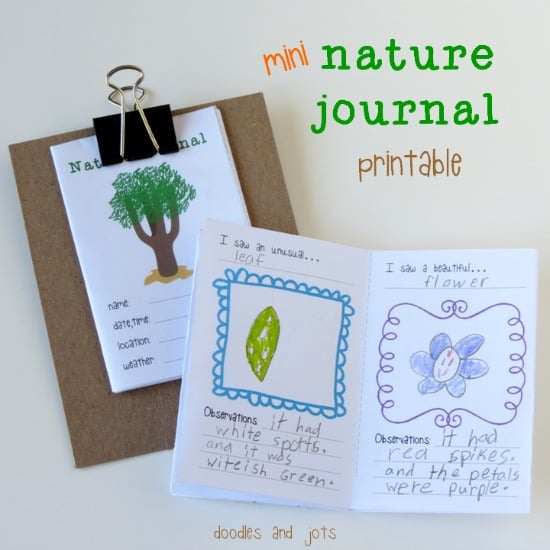 Mini-Nature-Journal-Printable-