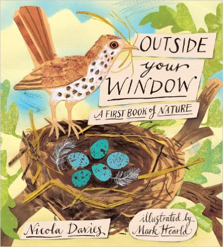 Outside-Your-Window-A-First-Book-of-Nature