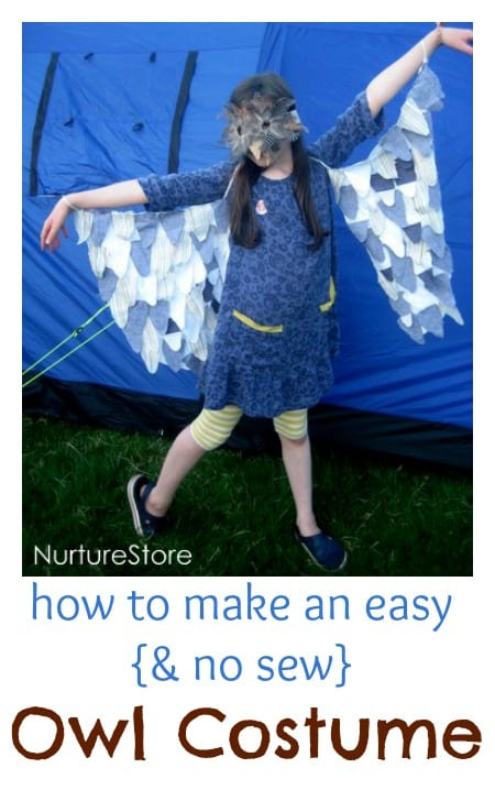How to make a great, easy, no sew owl costume.