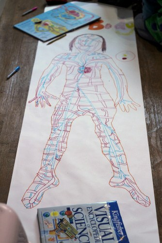 draw round yourself all about me project