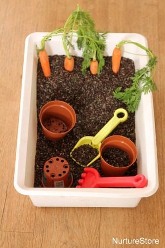 spring sensory tub rice