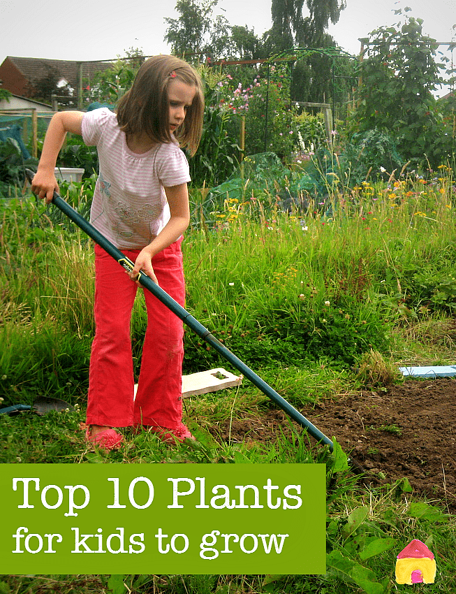 Top ten plants to grow for kids - great ideas for gardening with children