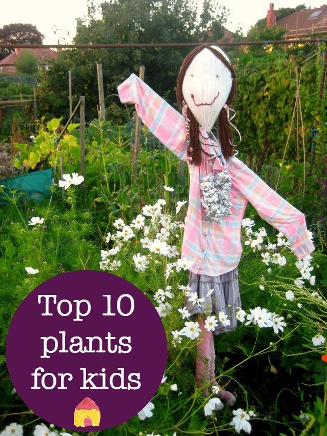 top ten easy plants to grow with kids