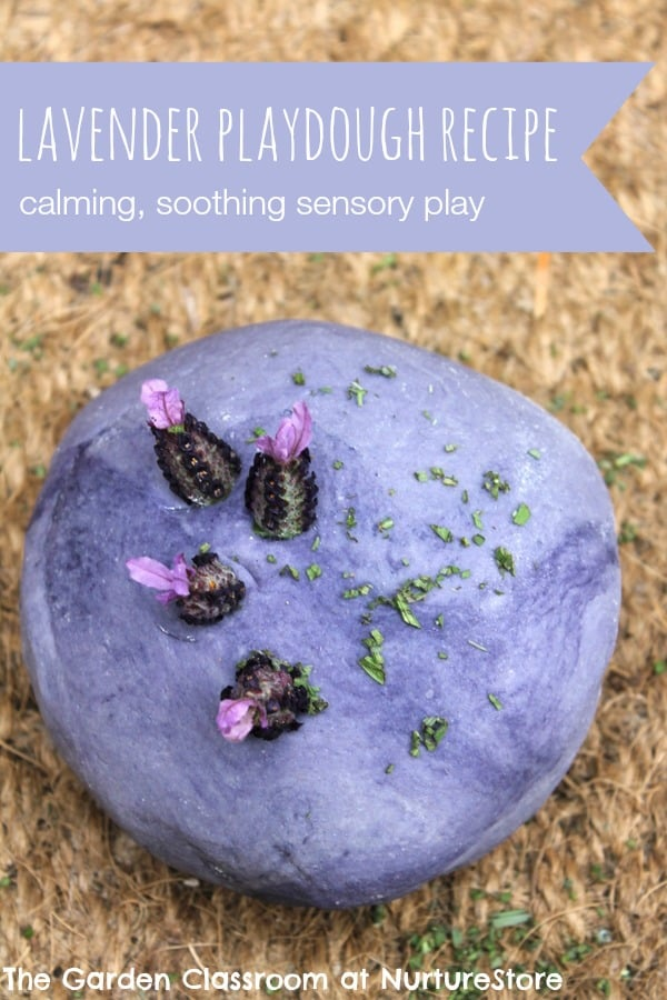 Quick and easy lavender playdough recipe. Perfect for relaxing kids with some sensory play.