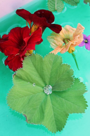 sensory play with flowers