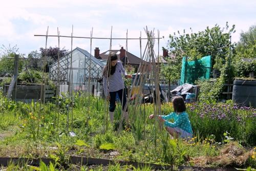 kids garden activities for june