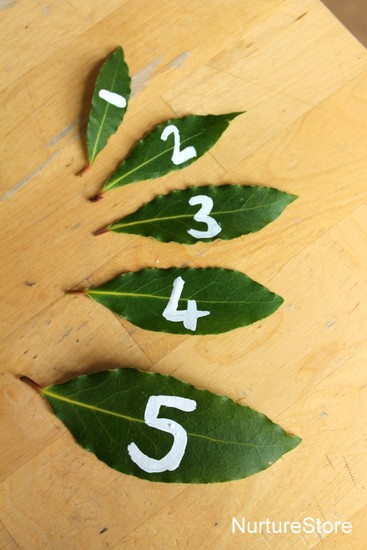 nature play math games