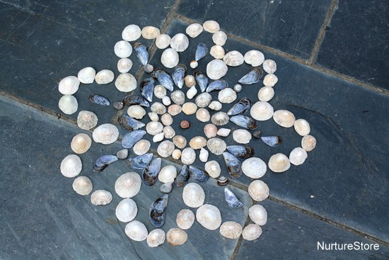 mandalas for kids using shells