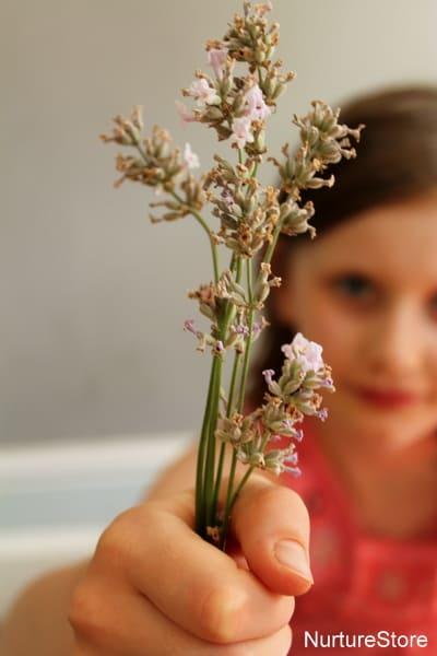 lavender sensory play