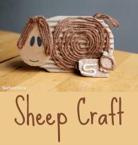 sheep craft 200