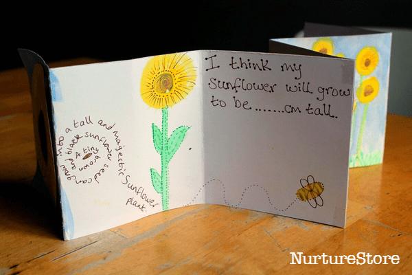 How to grow sunflowers with children NurtureStore