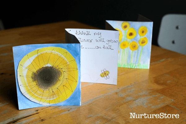 how to record a seed growing experiment