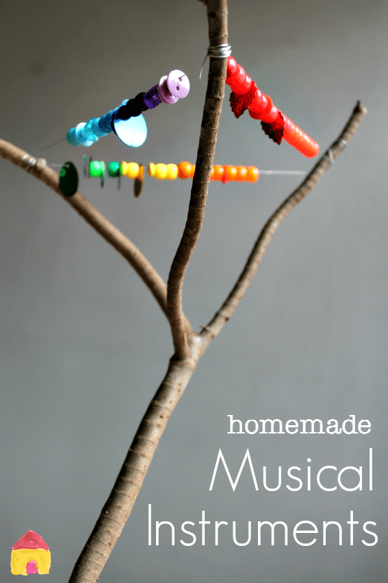 How To Make A Stick Insect Home