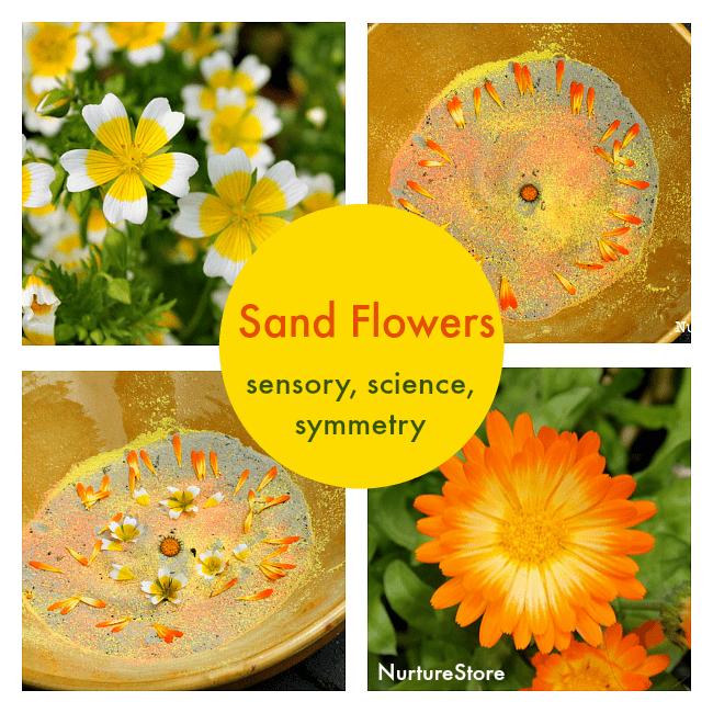 sand flowers july 22nd fb