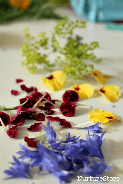 art using flower petals