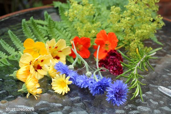 flower mandala craft