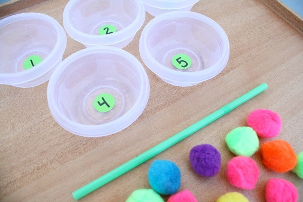 Pom Pom Counting Game Materials