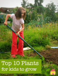 top-10-plants-for-kids-to-grow