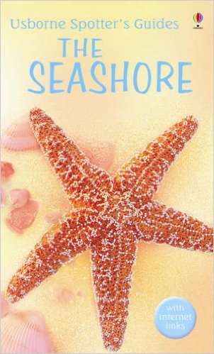 The-Seashore-Usborne-Spotter's-Guide