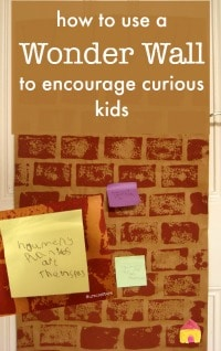 wonder-wall-classroom-organisation