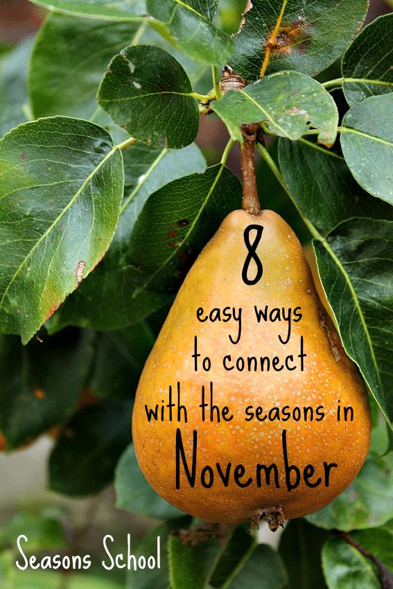 Lovely and easy seasonal activities for children for November from Seasons School :: seasonal living :: November activities for kids