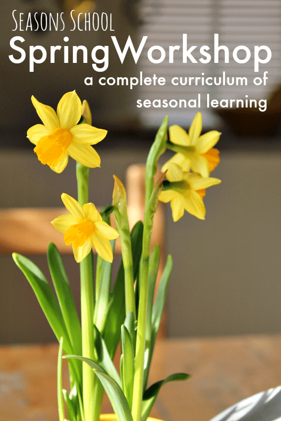 Spring curriculum plans for art based learning, spring activities, spring crafts, spring lesson plans