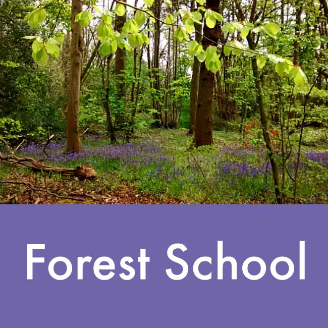 Forest school activities for outdoor classrooms - NurtureStore