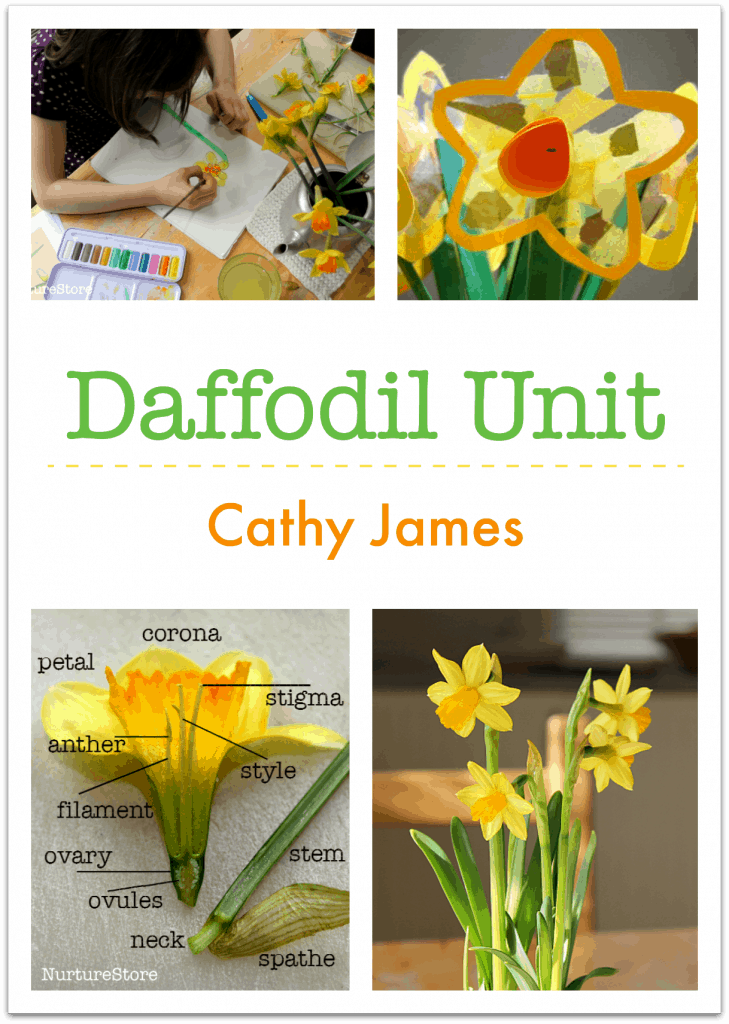 Daffodil unit, daffodil lesson plans for spring homeschool