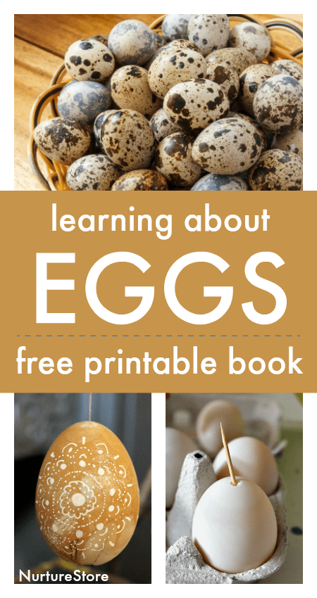 egg unit free printable book, learning about eggs