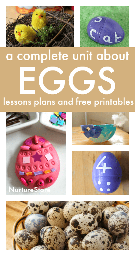 A complete egg unit with egg lesson plans and free printables