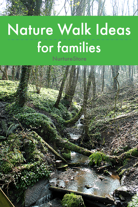 nature walk ideas for families