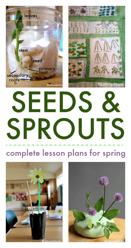 seed growing lesson plans, spring nature study activities