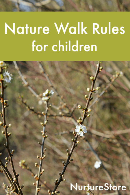 simple nature walk rules for children