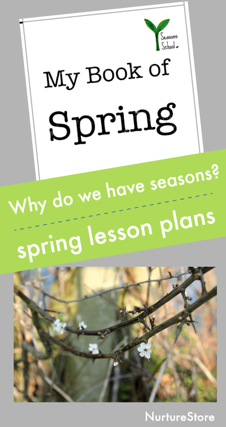 why do we have seasons lesson plan