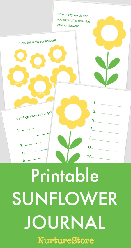 picture about Printable Pictures of Sunflowers referred to as Printable Sunflower Magazine - NurtureStore