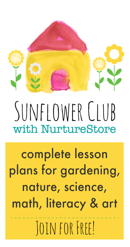 sunflower activities for kids, growing sunflowers with children
