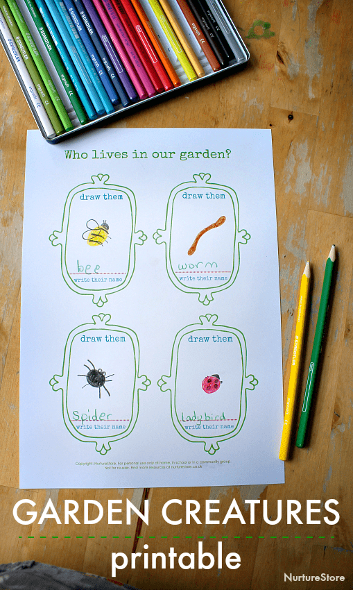 mini beast printable, backyard animals lesson plan printable