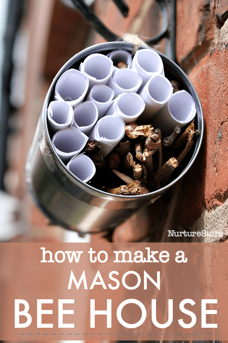 how to make a mason bee house, diy bee house craft, how to make a bug hotel