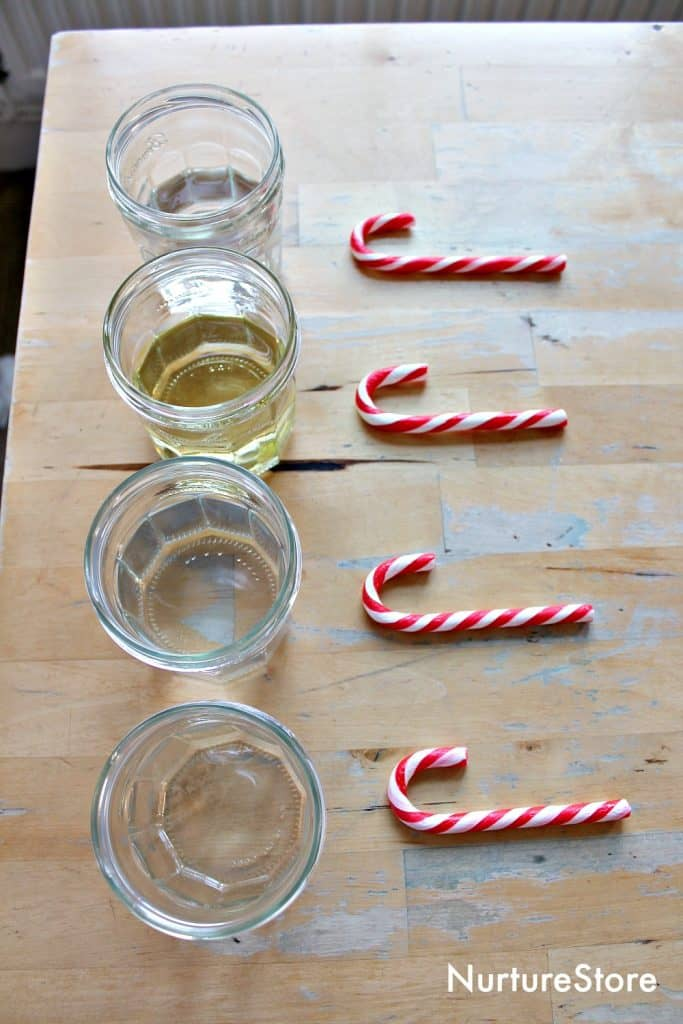 dissolving candy canes science experiment