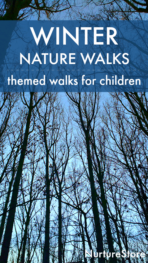 winter nature walk ideas for children, winter themed nature study ideas