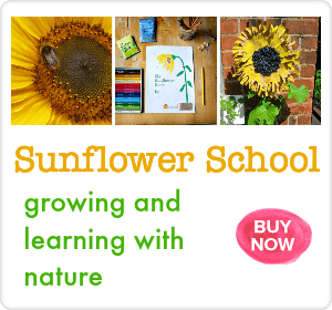 sunflower school