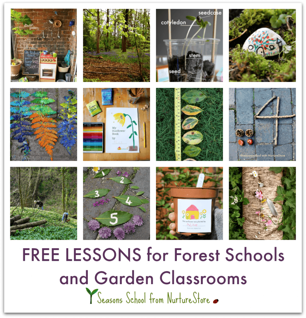 free forest school lesson ideas 3d