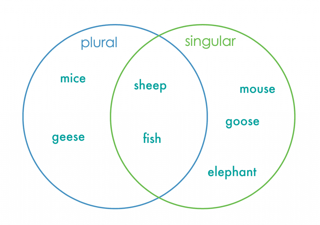 Venn Diagram Template For Kids