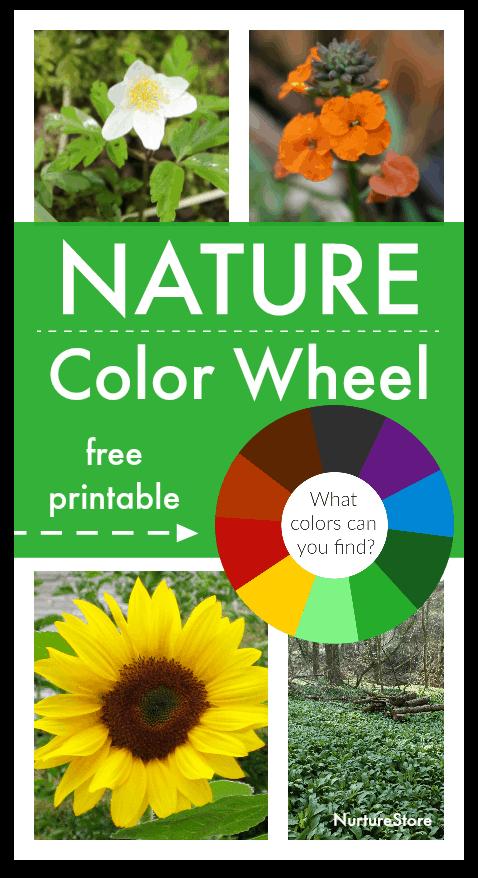 Nature Colour Wheel Activity With Printable Colour Wheel