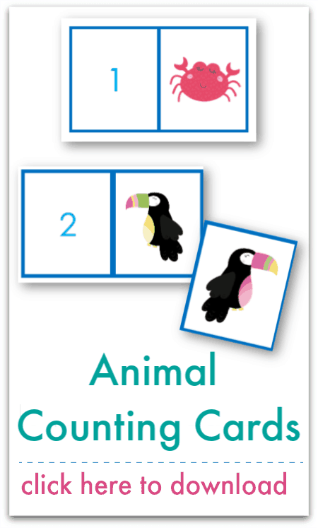 animal counting cards